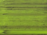 Пленка  (спектрум филм) SF 102