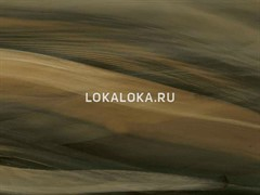 Пленка  (спектрум филм) SF 608